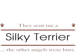 Silky Terrier T-Shirt - Other Angels