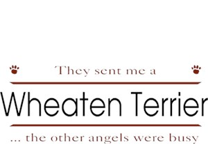 Wheaten Terrier T-Shirt - Other Angels