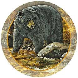 Black Bear Drink Coasters