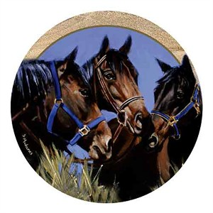 Brown Horse Drink Coasters