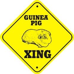 Guinea Pig Sign