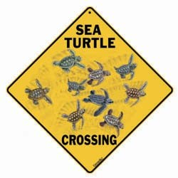 Sea Turtle Sign