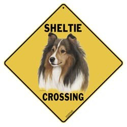 Shetland Sheepdog Sign