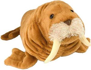 Walrus Plush