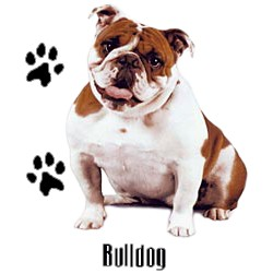 Bulldog T-Shirt - Stylin With Paws