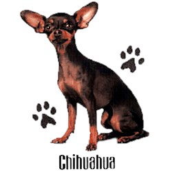Chihuahua T-Shirt - Stylin With Paws