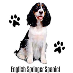 Springer Spaniel T-Shirt - Stylin With Paws