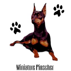 Miniature Pinscher T-Shirt - Stylin With Paws