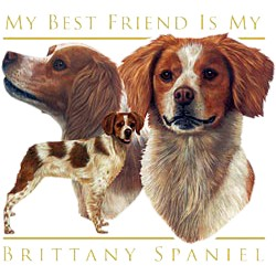 Brittany T-Shirt - My Best Friend Is