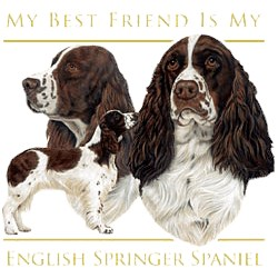 Springer Spaniel T-Shirt - My Best Friend Is