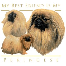Pekingese T-Shirt - My Best Friend Is