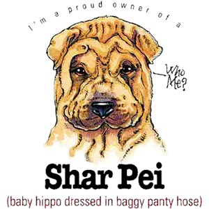 Shar Pei T-Shirt - My Best Friend Is