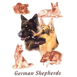 German Shepherd T-Shirt - Eye Catching