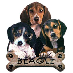 Beagle T-Shirt - Trio of Three