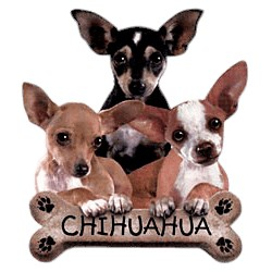 Chihuahua T-Shirt - Trio of Three