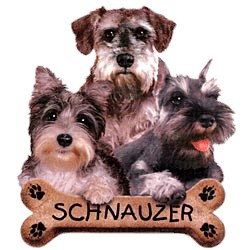 Schnauzer T-Shirt - Trio of Three