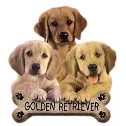 Golden Retriever T-Shirt - Trio of Three