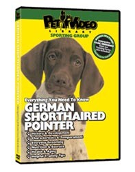 German Shorthaired Pointer Video