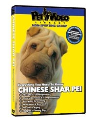 Shar Pei Video