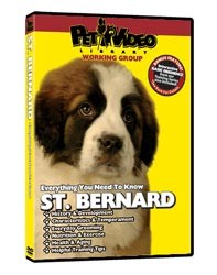 Saint Bernard Video