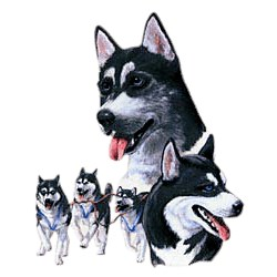 Siberian Husky T-Shirt - Best Friends