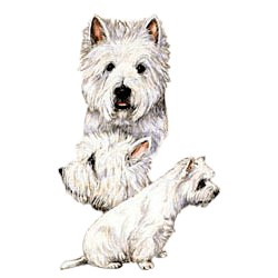 West Highland Terrier T-Shirt - Best Friends
