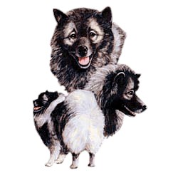 Keeshond T-Shirt - Best Friends