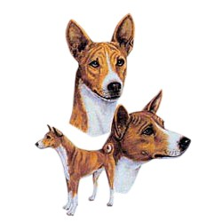 Basenji T-Shirt - Best Friends