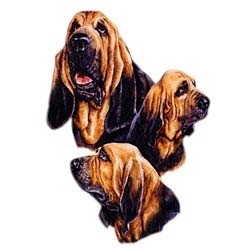 Bloodhound T-Shirt - Best Friends