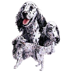 English Setter T-Shirt - Best Friends