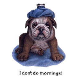 Dog T-Shirt - Mornings