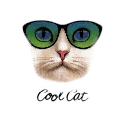 Cat T-Shirt - Cool Cat