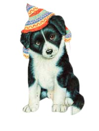 Border Collie T-Shirt - Puppy