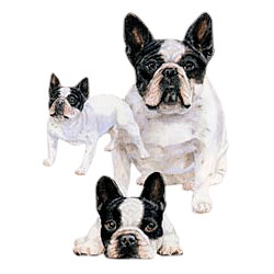 French Bulldog T-Shirt - Best Friends