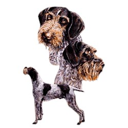 German Wirehaired Pointer T-Shirt - Best Friends