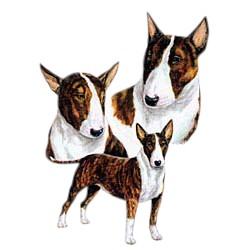 Bull Terrier T-Shirt - Best Friends