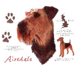 Airedale Terrier T-Shirt - History Collection