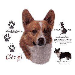 Corgi T-Shirt - History Collection