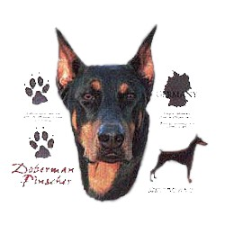 Doberman Pinscher T-Shirt - History Collection