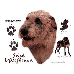 Irish Wolfhound T-Shirt - History Collection