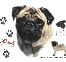 Pug T-Shirt - History Collection