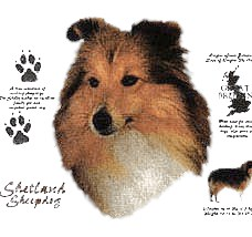 Shetland Sheepdog T-Shirt - History Collection