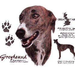 Greyhound T-Shirt - History Collection