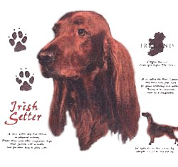 Irish Setter T-Shirt - History Collection