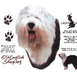 Old English Sheepdog T-Shirt - History Collection