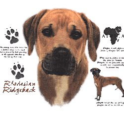 Rhodesian Ridgeback T-Shirt - History Collection