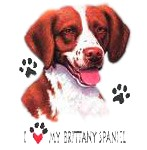 Brittany T-Shirt - I Love My
