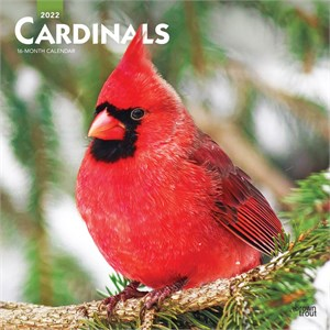  Cardinals Calendar 2013