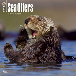 Sea Otters Calendar 2013