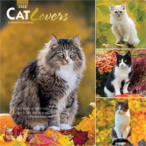 Cat Lovers Calendar 2013